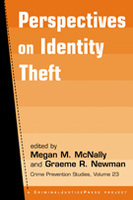 Perspectives on Identity Theft