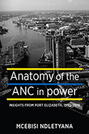 Anatomy of the ANC in Power: Insights from Port Elizabeth, 1990-2019